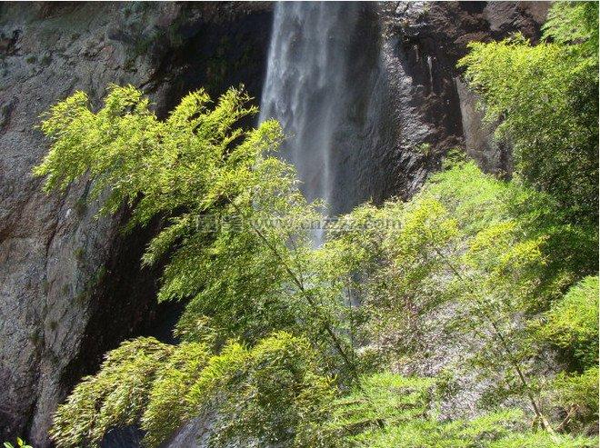 福建菜溪岩风景区旅游攻略