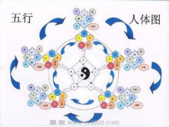 中医的核心理念:气与经络