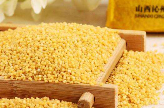 我国哪里的小米最好吃?哪里的小米最有名?